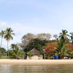 Voyage et Découverte - La Casamance