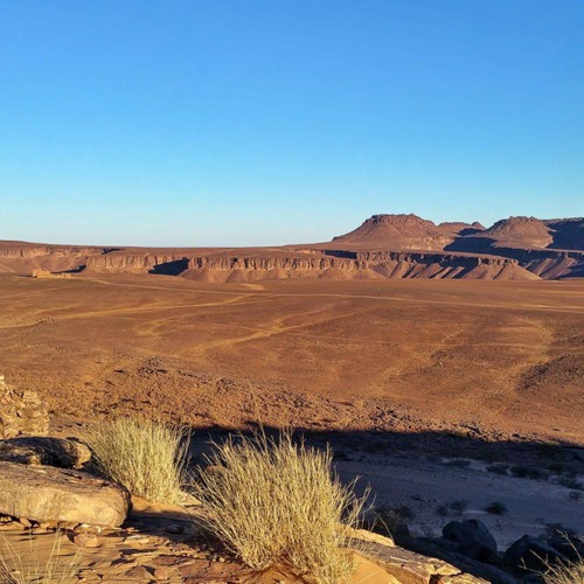 Les Grands Espaces de Mauritanie