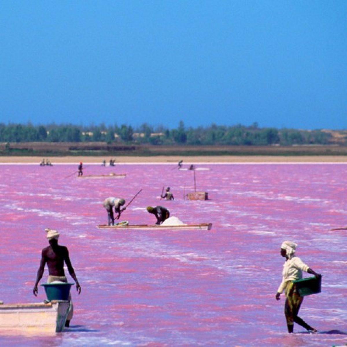 El lago Rosa - Medio día