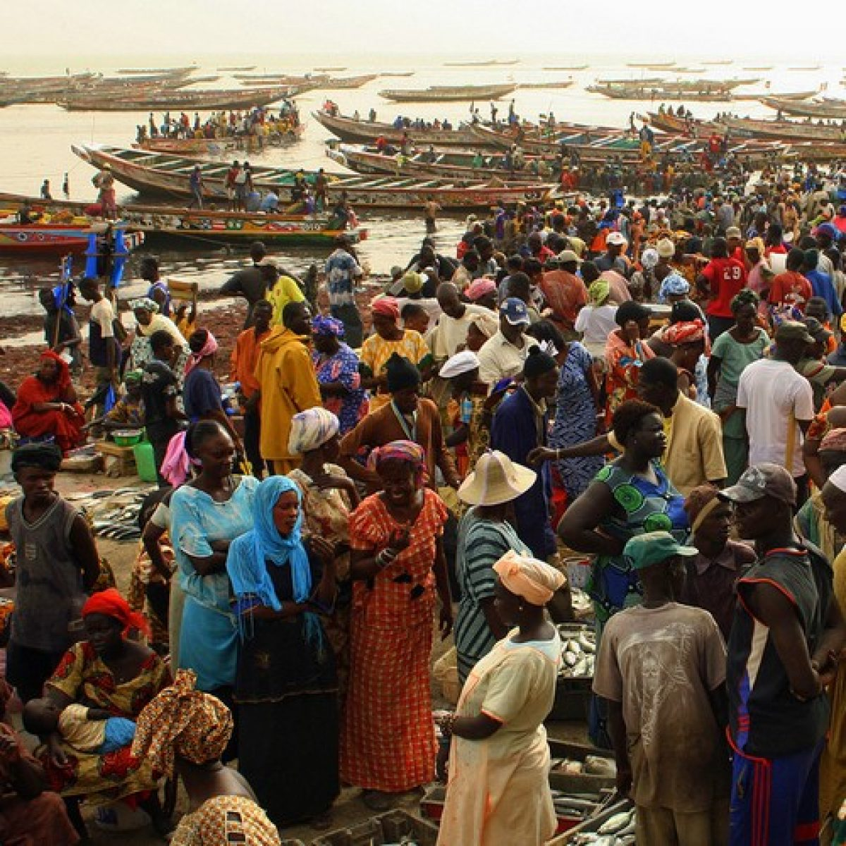 Arrival of the Fishermen in Mbour - 1/2 Day
