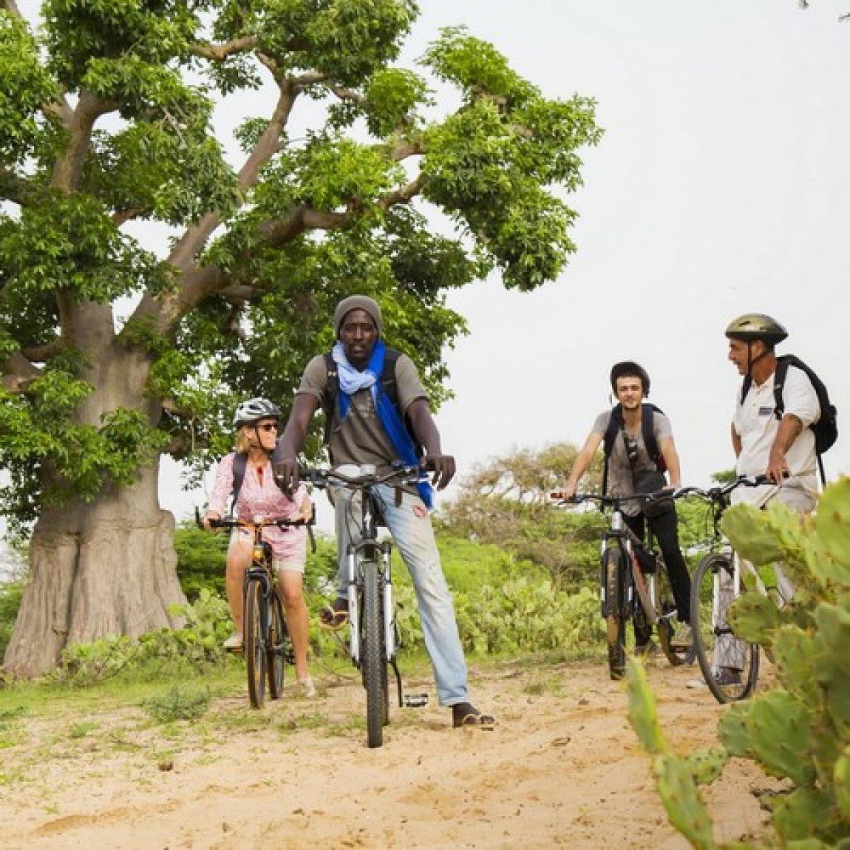 Aventure à vélo - 1 journée