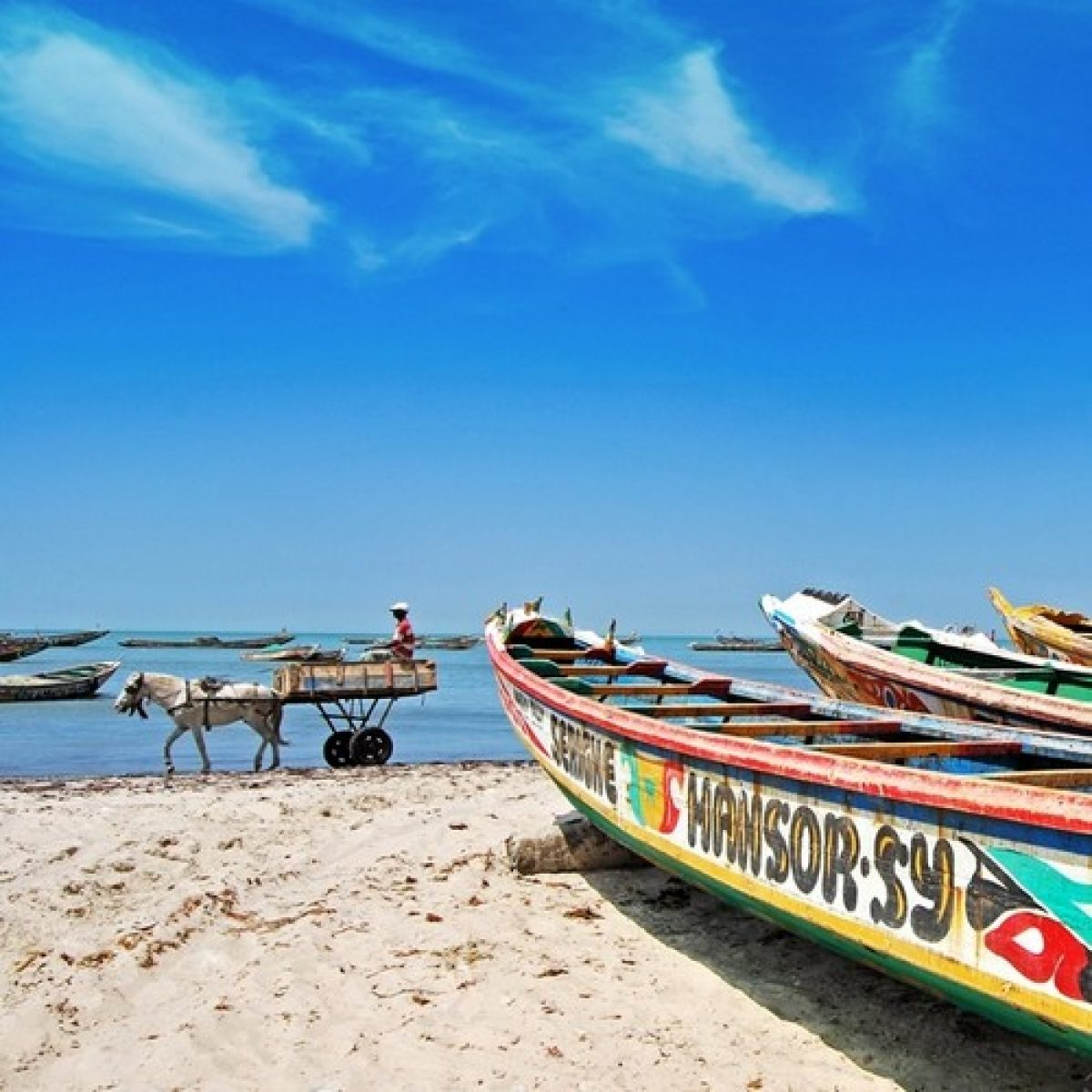 The  Saloum Delta - Day